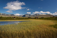 Rondane nationaal park met bergen en moeras stock afbeelding