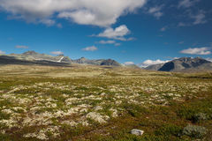 Rondane national park with mountains Royalty Free Stock Photo