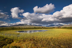 Rondane national park with mountains and swamp Royalty Free Stock Photos