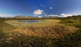 Rondane national park with mountains and swamp Royalty Free Stock Photography