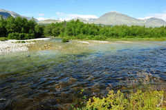 Rondane nationalpark Royaltyfri Bild