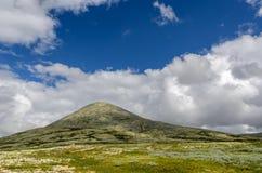 Rondane Nationalpark lizenzfreies stockfoto