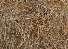 Ronde balen van stro in de weide Royalty-vrije Stock Afbeeldingen