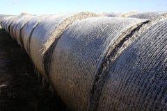 Ronde balen van stro en hooi Royalty-vrije Stock Fotografie
