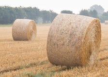 Ronde balen van stro op een stoppelveld Stock Afbeelding
