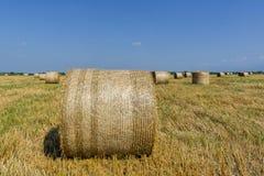 Ronde balen van stro op gesneden korrelgebied Royalty-vrije Stock Foto