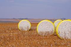 Ronde balen van vers geoogst die katoen in geel plastiek, op het gebied in Campo Verde, Mato Grosso, Brazilië wordt verpakt royalty-vrije stock afbeeldingen