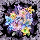 Ronde bos van akeleibloemen of aquilegia in vierkant die kader van exotische monsterabladeren wordt gemaakt op zwarte achtergrond Royalty-vrije Stock Foto
