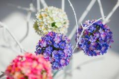 Ronde decoratieve bloemballen Stock Fotografie
