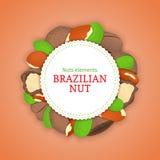 Ronde die banner uit paranoot wordt samengesteld Vectorkaartillustratie Het kader van cirkelnoten, Braziliaans nootfruit in shell Stock Foto's