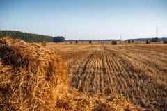 Ronde hooi of strobalen binnen in platteland Close-up Stock Afbeelding
