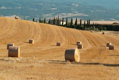 Ronde hooibalen op gebied van Toscanië Royalty-vrije Stock Fotografie