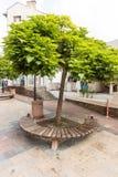 Ronde houten banken in de voetstraat van de stad van Karlovo, Bulgarije Stock Afbeelding