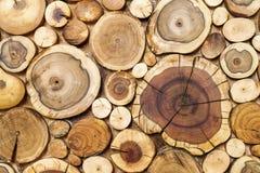 Ronde houten stompenachtergrond, de sectie van de Bomenbesnoeiing voor achtergrond Stock Afbeeldingen