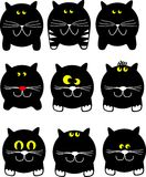 Ronde katten Royalty-vrije Stock Foto's