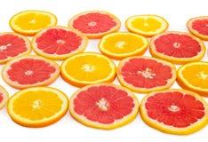 Ronde plakken van sinaasappelen en rode grapefruits op witte achtergrond Royalty-vrije Stock Afbeeldingen
