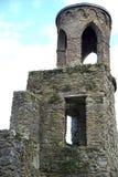 Ronde toren om het domein te onderzoeken stock afbeelding