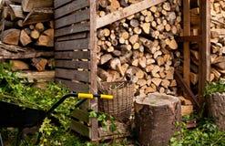 Rondin avec les tronçons d'arbre et la brouette Image libre de droits