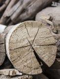 Rondin en bois Photographie stock