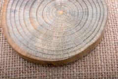 Rondin en bois coupé dans les morceaux minces ronds Photos libres de droits