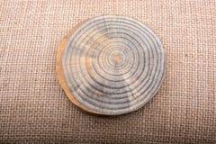Rondin en bois coupé dans les morceaux minces ronds Images libres de droits