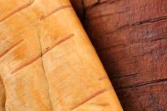 Rondin et écorce de bouleau Photographie stock libre de droits