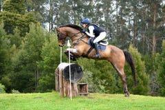Rondin sautant de cheval de concours complet Photos libres de droits