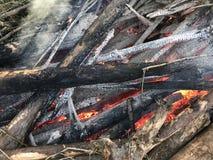 Rondins brûlants se transformant en charbons photo stock