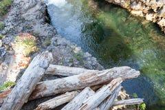 Rondins d'inondation par la rivière photo libre de droits