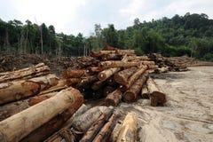 Rondins de bois de construction Photographie stock