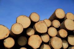 Rondins de bois de construction et ciel bleu image libre de droits