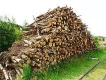 Rondins empilés de bois de chauffage Image stock