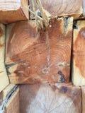 Rondins en bois de cèdre Image libre de droits