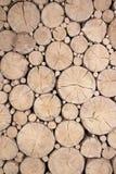 Rondins en bois de Cutted Photos libres de droits