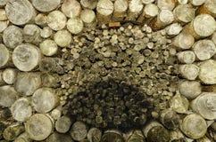 Rondins en bois disposés en cercle Image stock
