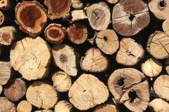 Rondins en bois naturels fond, vue supérieure Image libre de droits