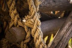 Rondins en bois noués ensemble Image stock