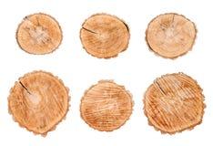 Rondins en bois réglés d'isolement sur le fond blanc image libre de droits