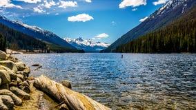 Rondins s'étendant sur le rivage du lac Duffey Images stock