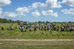 Rondtrekkende arbeiders die gewassen oogsten Royalty-vrije Stock Foto