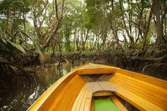 Rondvaart door mangrove en regenwouden in Borneo Stock Fotografie