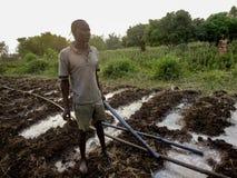 Rongo, Kenya Immagine Stock Libera da Diritti