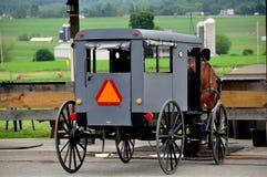Ronks, PA: Caballo y cochecillo de Amish imágenes de archivo libres de regalías