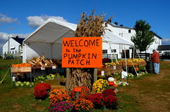 Ronks, PA: Pumpkin Patch Farm Stock Images