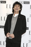 Ronnie Wood Stock Image