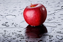 Rood Apple op Zwarte Achtergrond Stock Fotografie