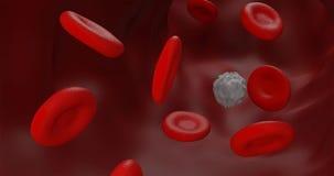 Rood bloed en leucocytconcept binnen blooodbuis het grafische 3D teruggeven stock illustratie
