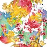 Rood bloemen botanisch bloemenboeket Waterverf achtergrondillustratiereeks Naadloos patroon als achtergrond royalty-vrije stock fotografie