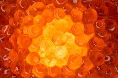 Rood caviaclose-up, gloed van de binnenkant Oocyte van zalmvissen royalty-vrije stock fotografie