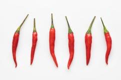 Rood Chili Pepper Stock Foto's